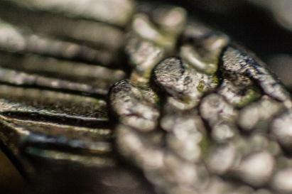 Winging It- Steel Wing Detail on Minature Bird Jewelry