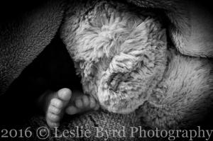 Theodore Newborn-10