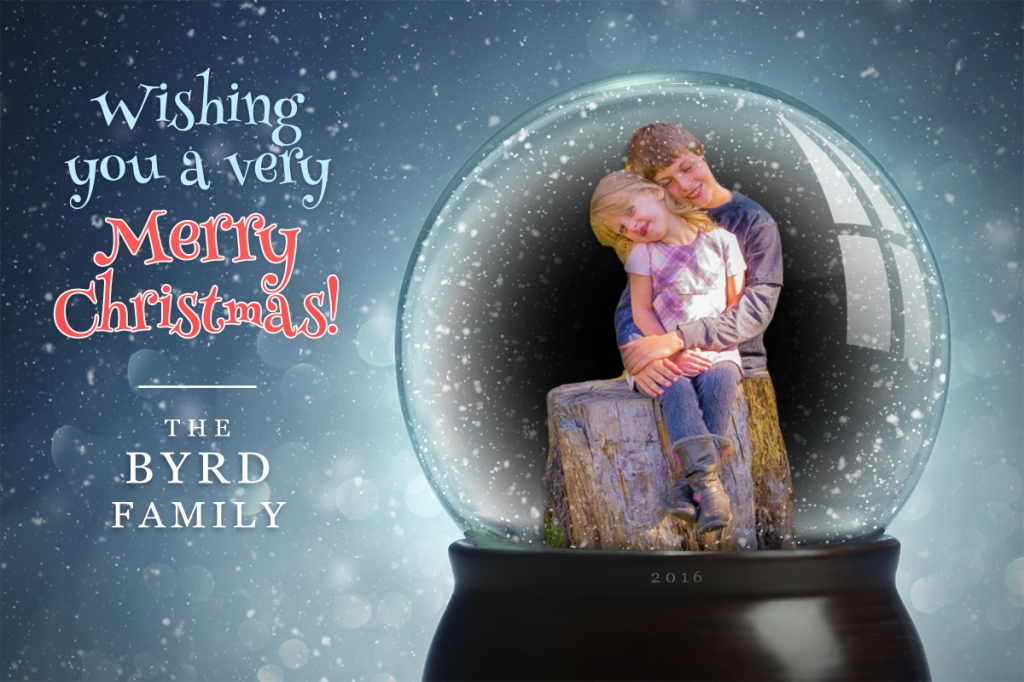 Christmas Snow Globe| Leslie Byrd Photography